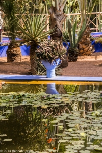 jardin marjorelle-4
