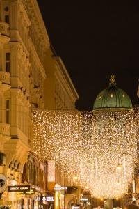 Bratislava & Vienna Dec15-208