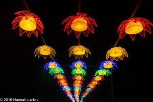 Chiswick House Chinese Lantern Festival Feb16-1