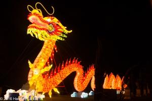 Chiswick House Chinese Lantern Festival Feb16-14