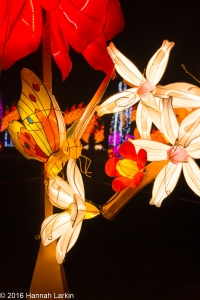 Chiswick House Chinese Lantern Festival Feb16-19