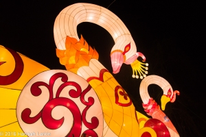 Chiswick House Chinese Lantern Festival Feb16-3