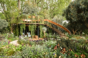 Chelsea Flower Show May2016-28