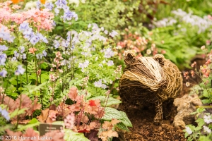 Chelsea Flower Show May2016-74