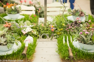 Chelsea Flower Show May2016-79